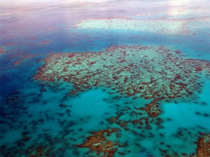 Australien Urlaub Sydney Great Barrier Rreef