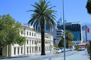 Australien Urlaub Palmen