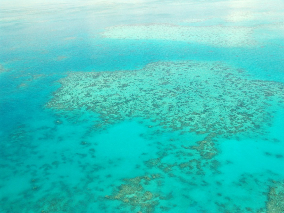 Australien Urlaub Great Barrier Reef, Queensland