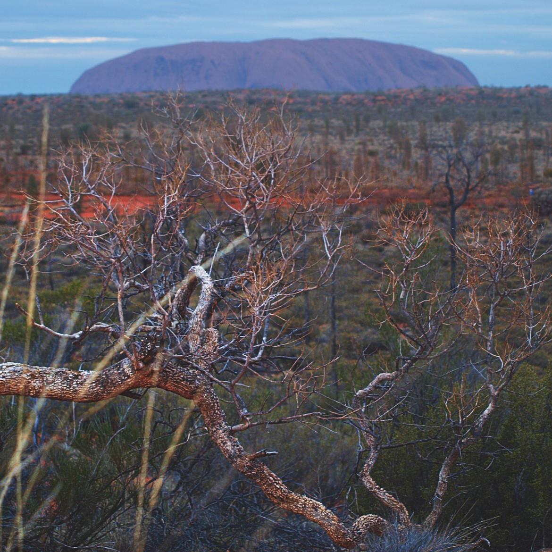 Australien Urlaub Northern Territory, Ayers Rock