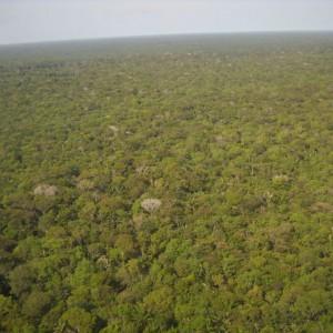 Brasilien Urlaub Amazonas