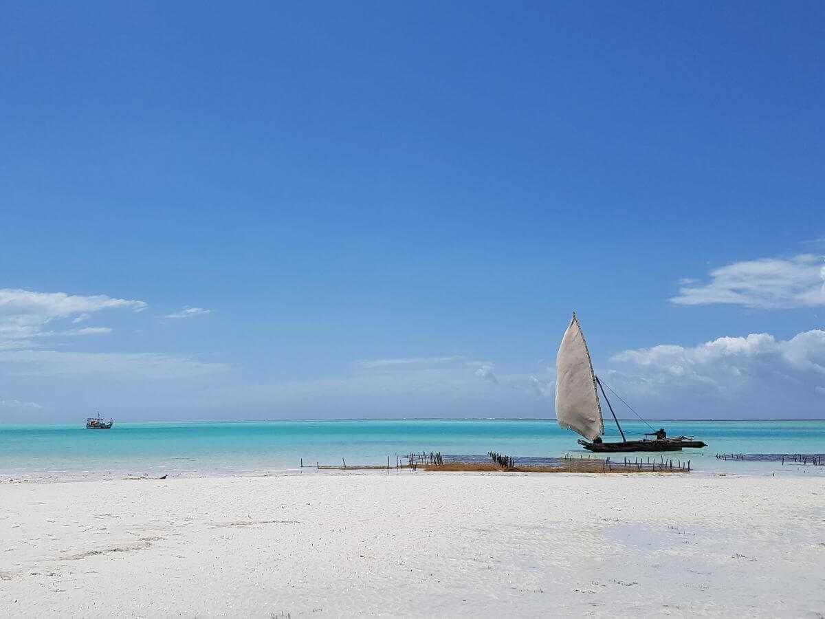 Sansibar Urlaub Strand Dhau